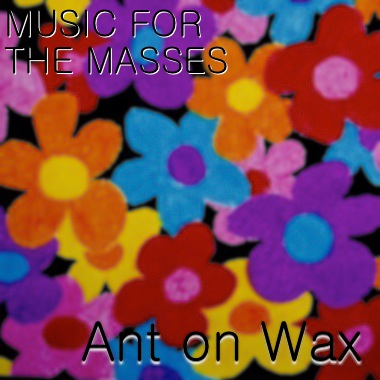 Ant on Wax