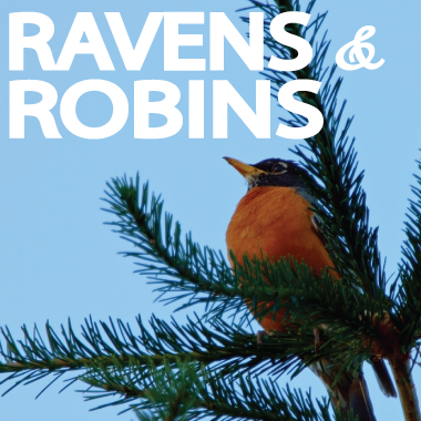 Ravens and Robins